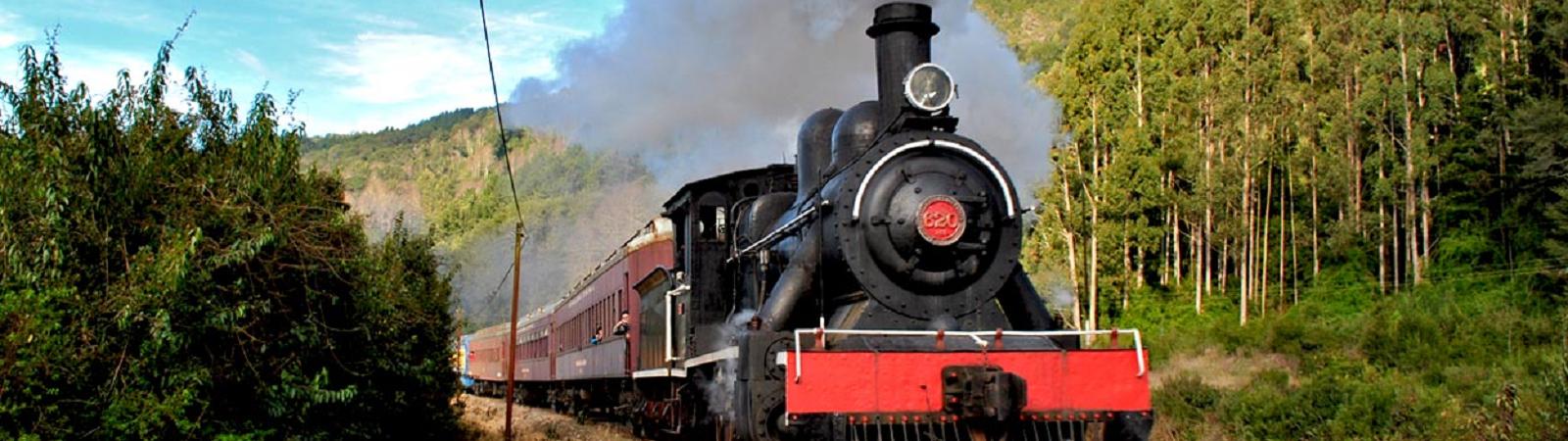 tren el valdiviano 03