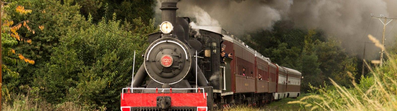tren el valdiviano 02