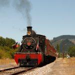 """Tren """"El Valdiviano"""" duplica sus viajes para este verano y suma dos recorridos especiales hasta Los Lagos"""
