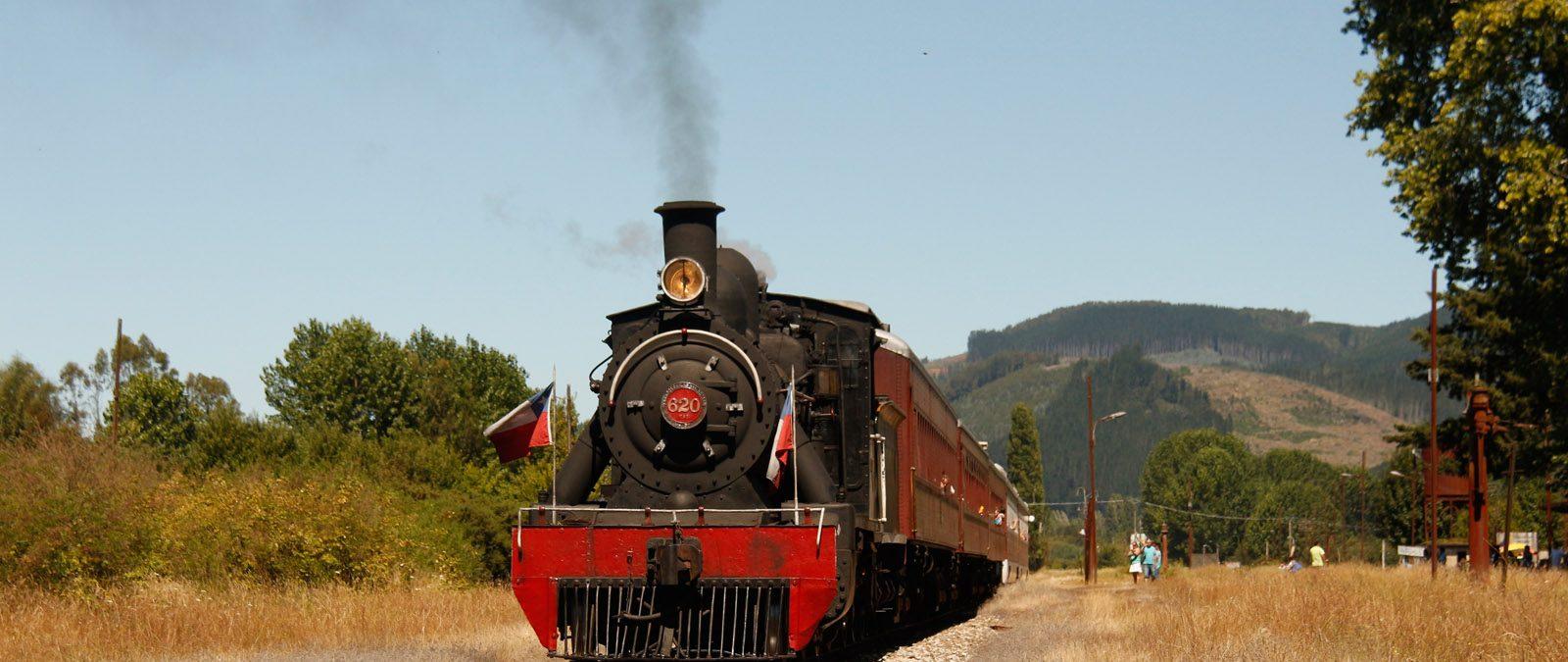 """Tren Turístico """"El Valdiviano"""" realizará este domingo último viaje de la temporada"""
