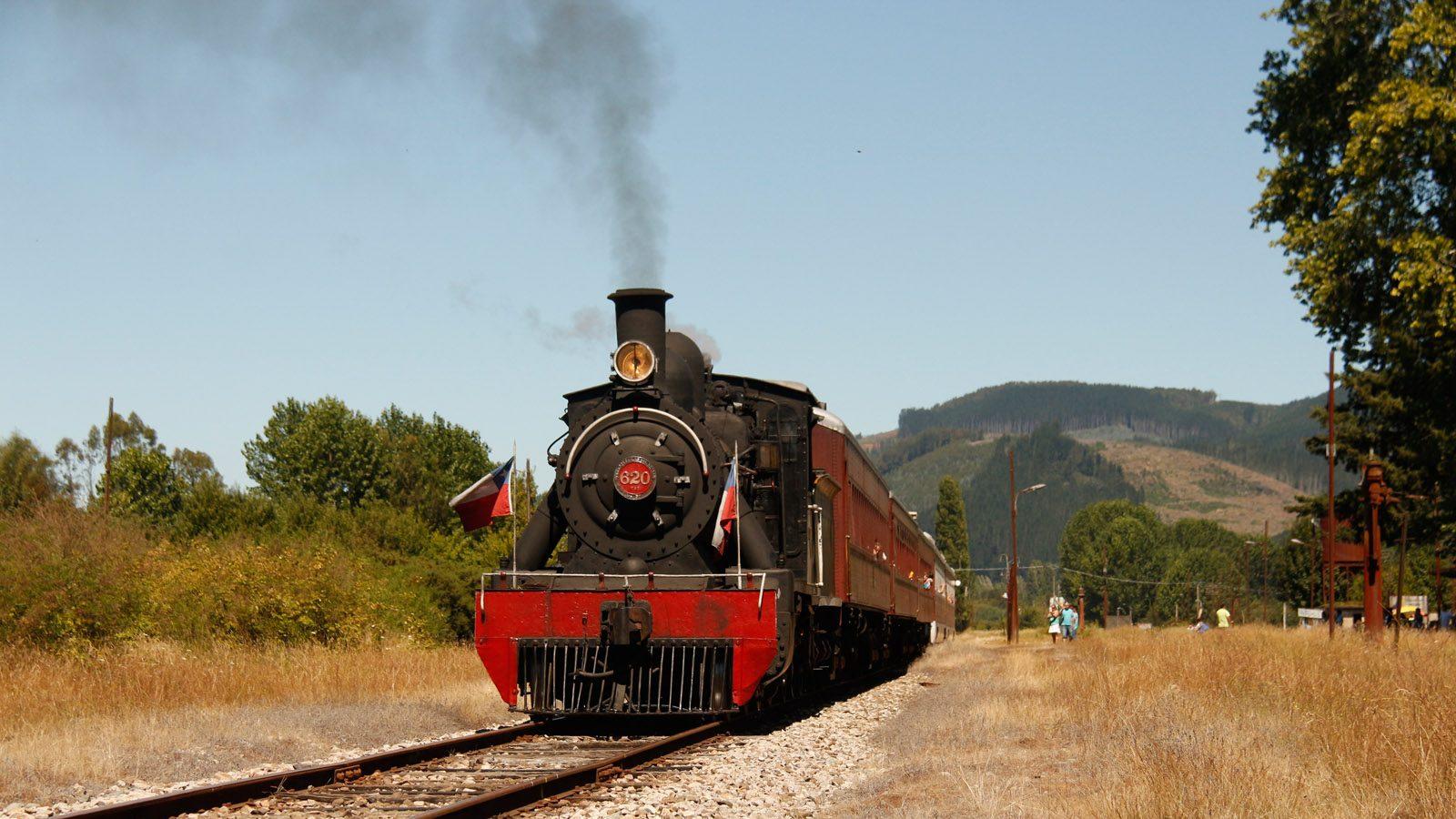 tren_el_valdiviano_04