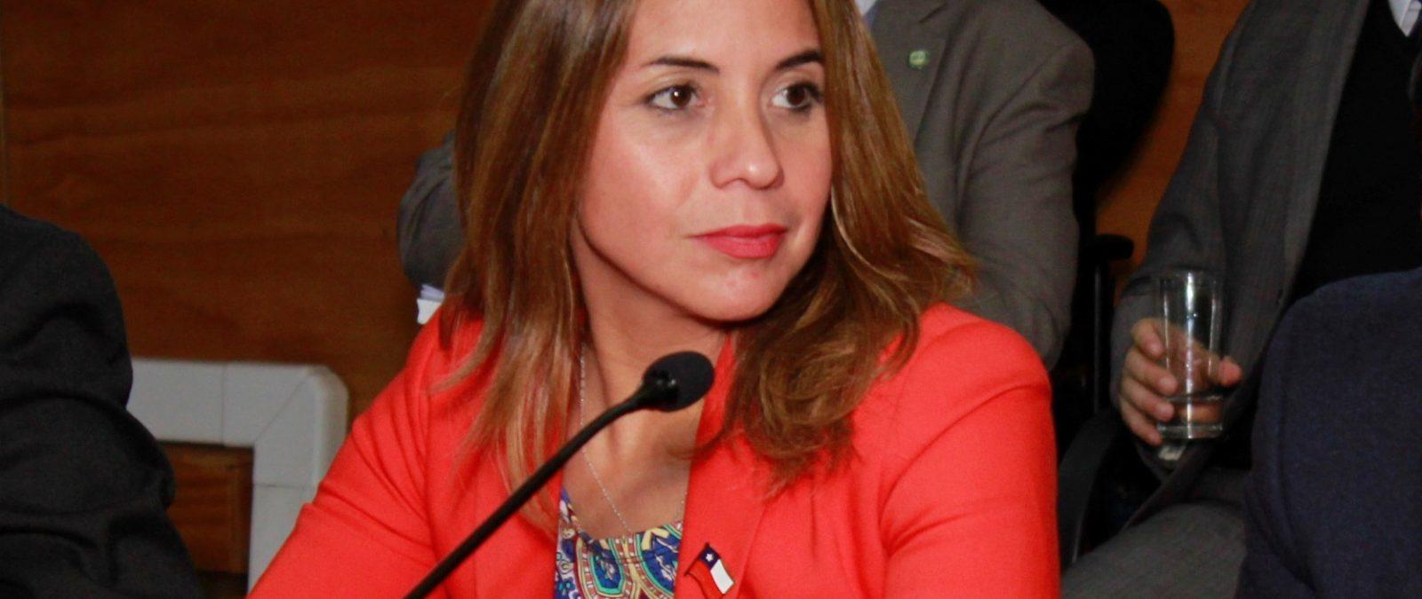 """Seremi de Gobierno calificó como """"una gran noticia para la región"""" relicitación de Ruta 5 Sur"""