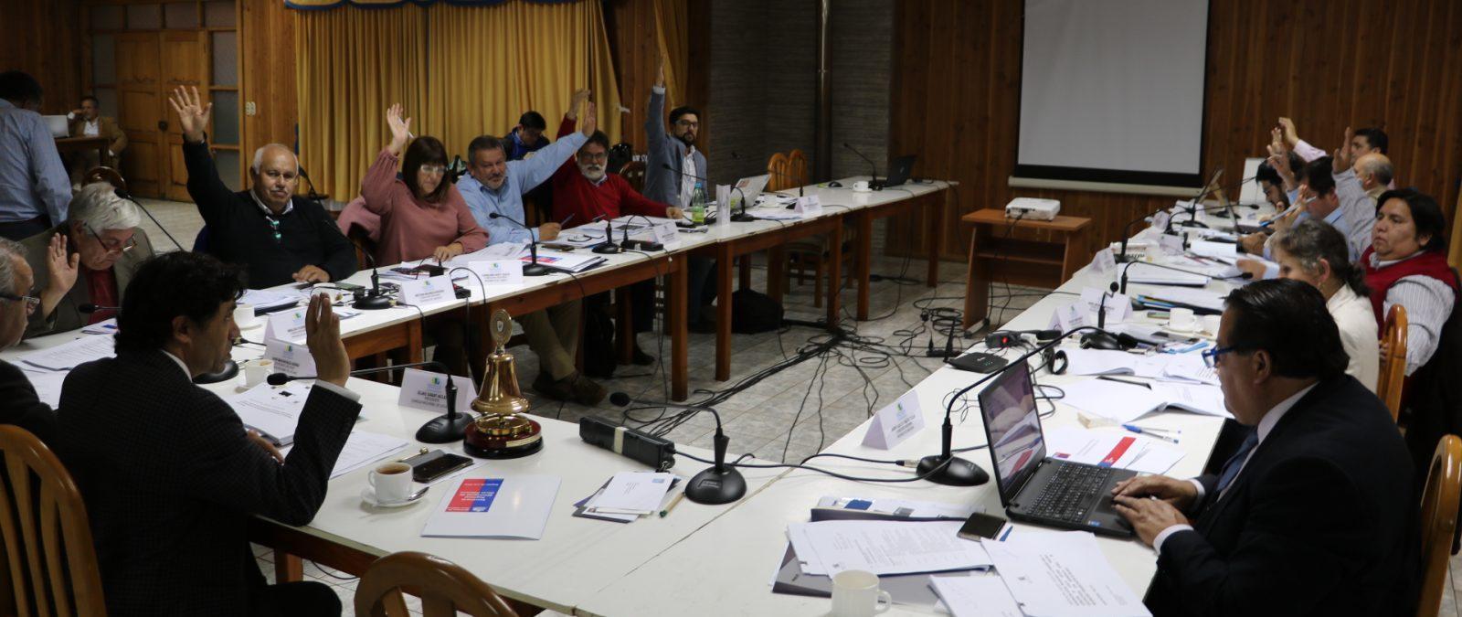 CORE Los Ríos destinó más de $100 millones para el desarrollo de actividades culturales en todo el territorio