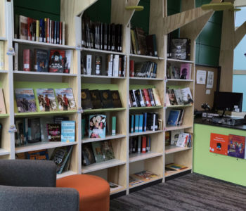 bibliotecas_teleton_valdivia_14012020