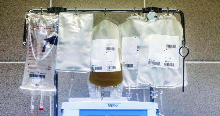 OSORNO: Donación de plasma de un paciente recuperado de Covid-19