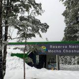 CONAF Los Ríos cierra de forma parcial Parque Nacional Villarrica Sur y Reserva Nacional Mocho Choshuenco
