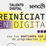 Lanzan 50 becas para la reconversión laboral en el área digital en Los Ríos